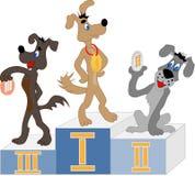 Ganadores de la competencia del perro en el podio Foto de archivo