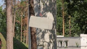 Gancho da construção Crane Concrete video estoque