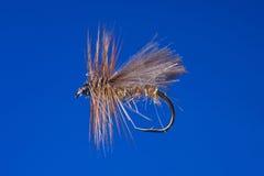 Gancho de leva de pesca de mosca foto de archivo libre de regalías