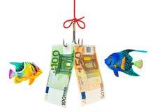 Gancho de leva y dinero de pesca Fotos de archivo libres de regalías