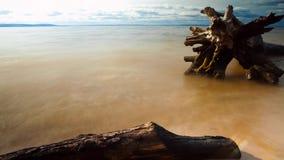 Gancho del lapso de tiempo en la playa almacen de metraje de vídeo