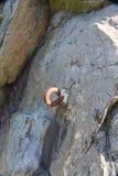 Gancho del metal fijado en roca Barricada de la Segunda Guerra Mundial Imagenes de archivo