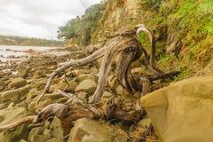 Gancho en la playa Imagen de archivo