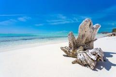 Gancho en la playa tropical fotos de archivo