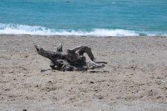 Gancho, mar y arena Fotografía de archivo
