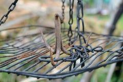 Gancho oxidado triplicar-se do ferro na grelha que pendura em correntes Imagens de Stock