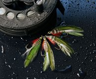 Ganchos de peixes da mosca Foto de Stock