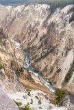 Gand Canyon in Yellowstone stock fotografie