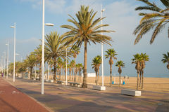 Gandia beach promenade Royalty Free Stock Images