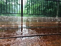 Ganeczek Podczas lato deszczu Fotografia Royalty Free