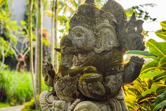 Ganesha coverd by moss in the park.  royalty free stock photos