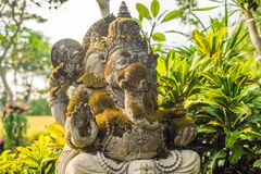 Ganesha coverd by moss in the park.  royalty free stock image