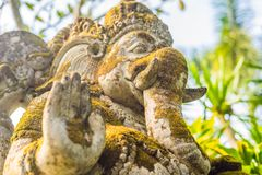 Ganesha coverd by moss in the park.  stock photos