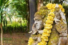 Ganesha coverd by moss in the park.Thailand. Beauty garden wood season ancient environment natural texture tree altar animal antique art asia asian background stock image