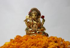Ganesha made from brass with foreground yellow marigold flower and white background. Ganesha made from brass with foreground yellow marigold flower and white royalty free stock images