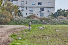 Ganey Aviv - 2016年12月02日:一个人走与在fi的狗 免版税库存图片
