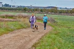 Ganey Aviv - 2016年12月02日:与狗的三个朋友步行在t 库存照片