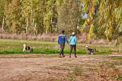 Ganey Aviv - 2016年12月02日:夫妇走与他们的狗 库存照片