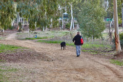 Ganey Aviv - 02 December 2016: A man walks with his dog in the f Stock Photography