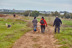 Ganey Aviv - 02 December 2016: Three friends walk with dogs in t Royalty Free Stock Photography