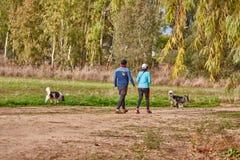 Ganey Aviv - 02 2016 Grudzień: Para chodzi z ich psami wewnątrz Zdjęcie Stock