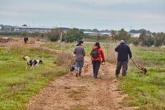 Ganey Aviv - 02 2016 Grudzień: Trzy przyjaciół spacer z psami w t Obraz Stock