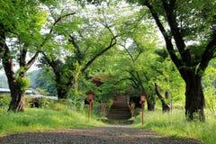 Gang aan Chureito-Pagode, het Heiligdom van Arakura Sengen Stock Foto's