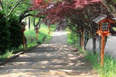 Gang aan Chureito-Pagode, het Heiligdom van Arakura Sengen Stock Fotografie