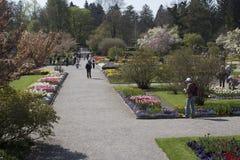 Gang in de botanische tuin Stock Afbeelding