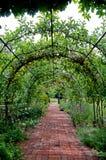 Gang door de Engelse tuin van het land Royalty-vrije Stock Foto