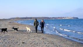 Gang door het overzees Jong paar met een hond op een zonnige de winterdag Stock Foto