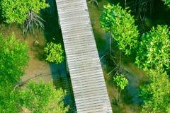 Gang houten brug in natuurlijk mangrove bosmilieu bij Chanthaburi-reis Thailand Stock Foto