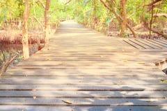Gang houten brug in natuurlijk mangrove bosmilieu bij Chanthaburi-reis Thailand Stock Fotografie