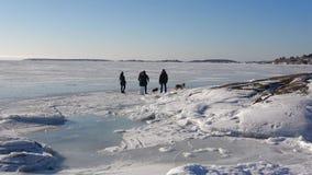 Gang langs de kust van de Golf van Finland in februari-middag Hanko stock footage