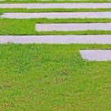Gang met groene grasachtergrond Stock Afbeeldingen