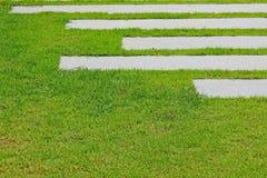 Gang met groene grasachtergrond Royalty-vrije Stock Fotografie