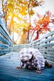 gang op een bridge2 Stock Afbeeldingen