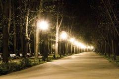 Gang in park bij nacht Stock Afbeeldingen