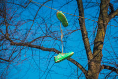 Gang signs. Old green shoes on power line Royalty Free Stock Photography