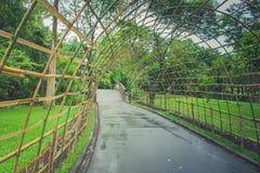 Gang van de bamboe de houten tunnel bij openbaar park stock fotografie