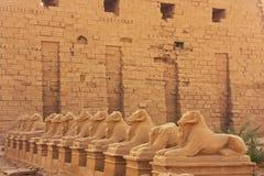 Gang van Sphynxes, Karnak-complexe tempel, Luxor royalty-vrije stock afbeelding