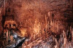 Gangala dal, Gyukusendo grotta, Naha, Okinawa royaltyfri foto