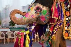 Gangaur Festival-Jaipur Elefantportrait Stockfotos