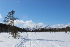 Gangen in de sneeuw stock fotografie