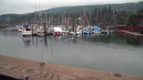 Ganges Centennial Wharf, Saltspring Island, BC, 4K. UHD stock footage