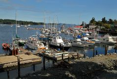 Ganges Harbor, Salt Spring Island royalty free stock images
