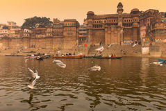 The Ganges river.India Royalty Free Stock Image