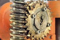 Gangrad, Zähne und Schraube der Industrie bearbeiten genommene Nahaufnahme maschinell Stockfoto