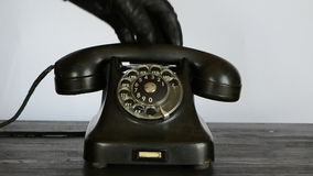Gangster with black glove calling antique telephone stock footage