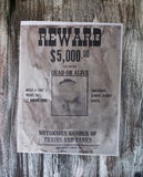 Gangster wanted, robber of banks,bandit, vintage Stock Photo